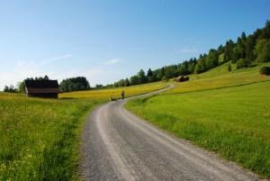 1391171_walking_in_bavaria