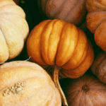 Vegan Thanksgiving: Mission Possible! Great Thanksgiving Recipes for Successful Vegan Holidays