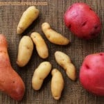 White Potatoes – A Nutritional Powerhouse That's Seriously Underrated