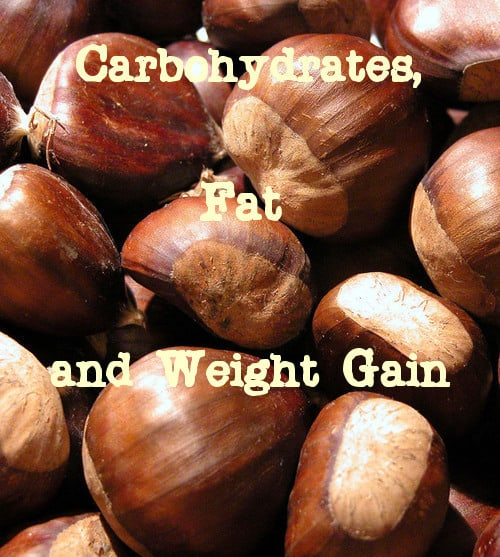 Carbs, fat and weight gain