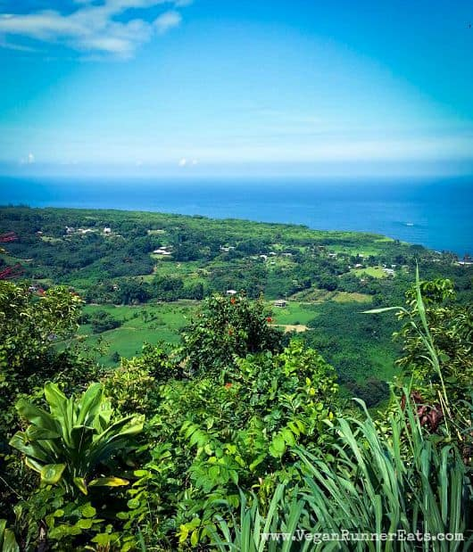 View on the road to Hana