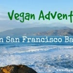 Our Vegan Adventures in San Francisco Bay Area: Vegan Restaurants and Beyond