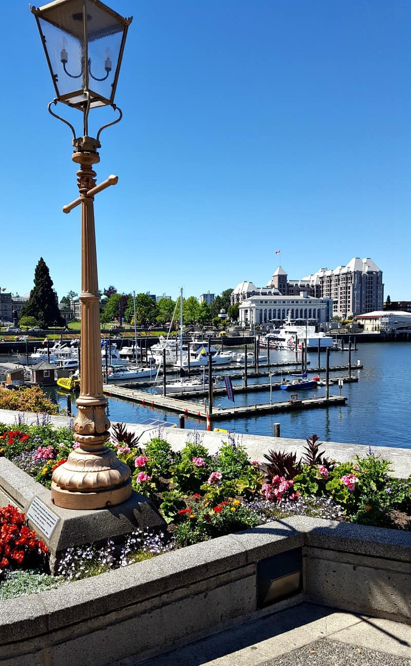 Downtown marina in Victoria, BC