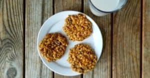 Healthy Vegan Oatmeal Raisin Cookies recipe