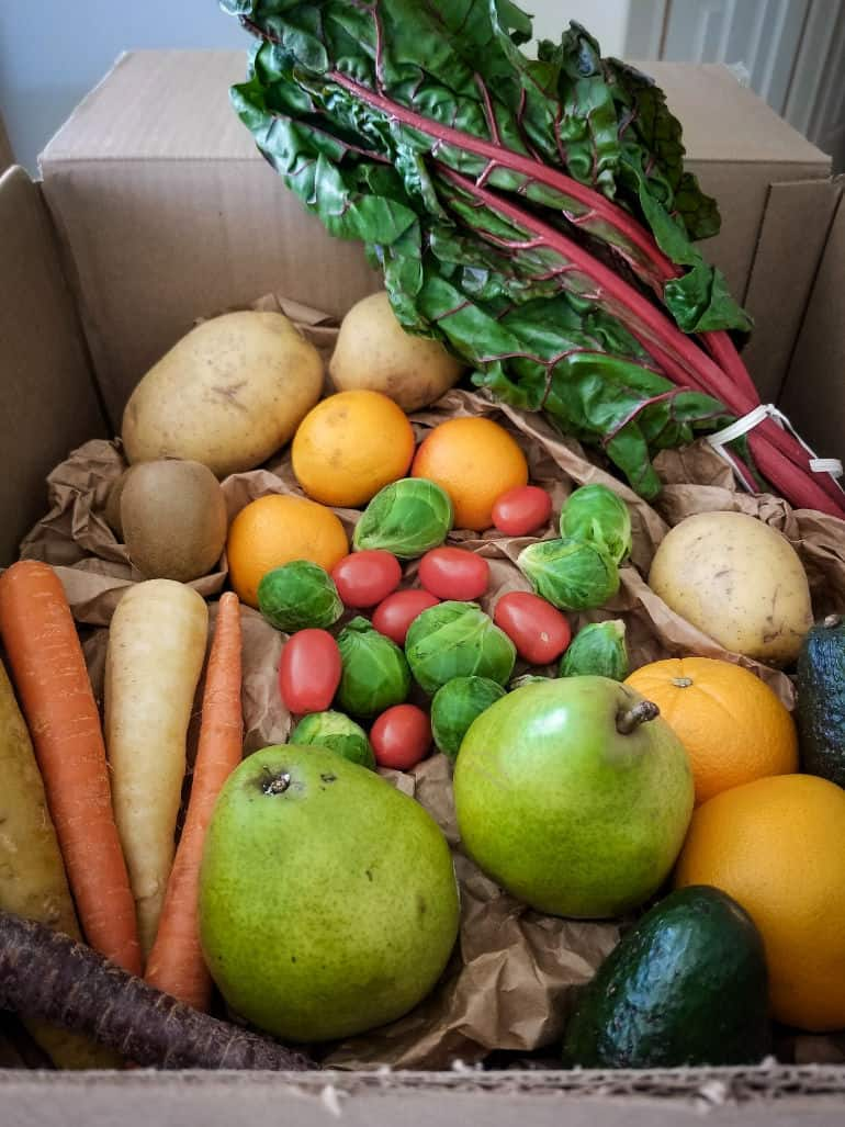 An honest review of Farmbox Direct fruit and vegetable delivery service.