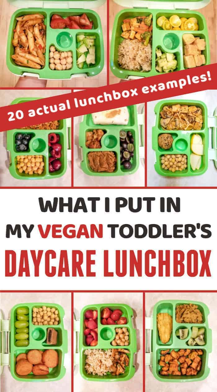 What I put in my vegan toddler's daycare lunchbox: 20 real-life examples.