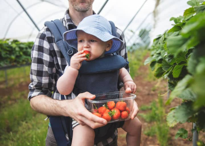 How to help your family members go vegan with you: tips for grownups